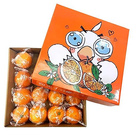 果郡王 重庆奉节肚子美脐橙16个装 新鲜水果
