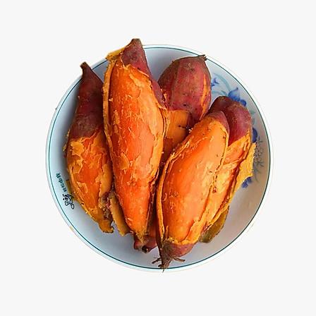 福建六鳌红薯5斤大果