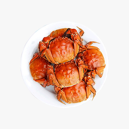 【预售9月23号发货】九百亩 阳澄湖大闸蟹鲜活螃蟹 全母2.0两8只 现货